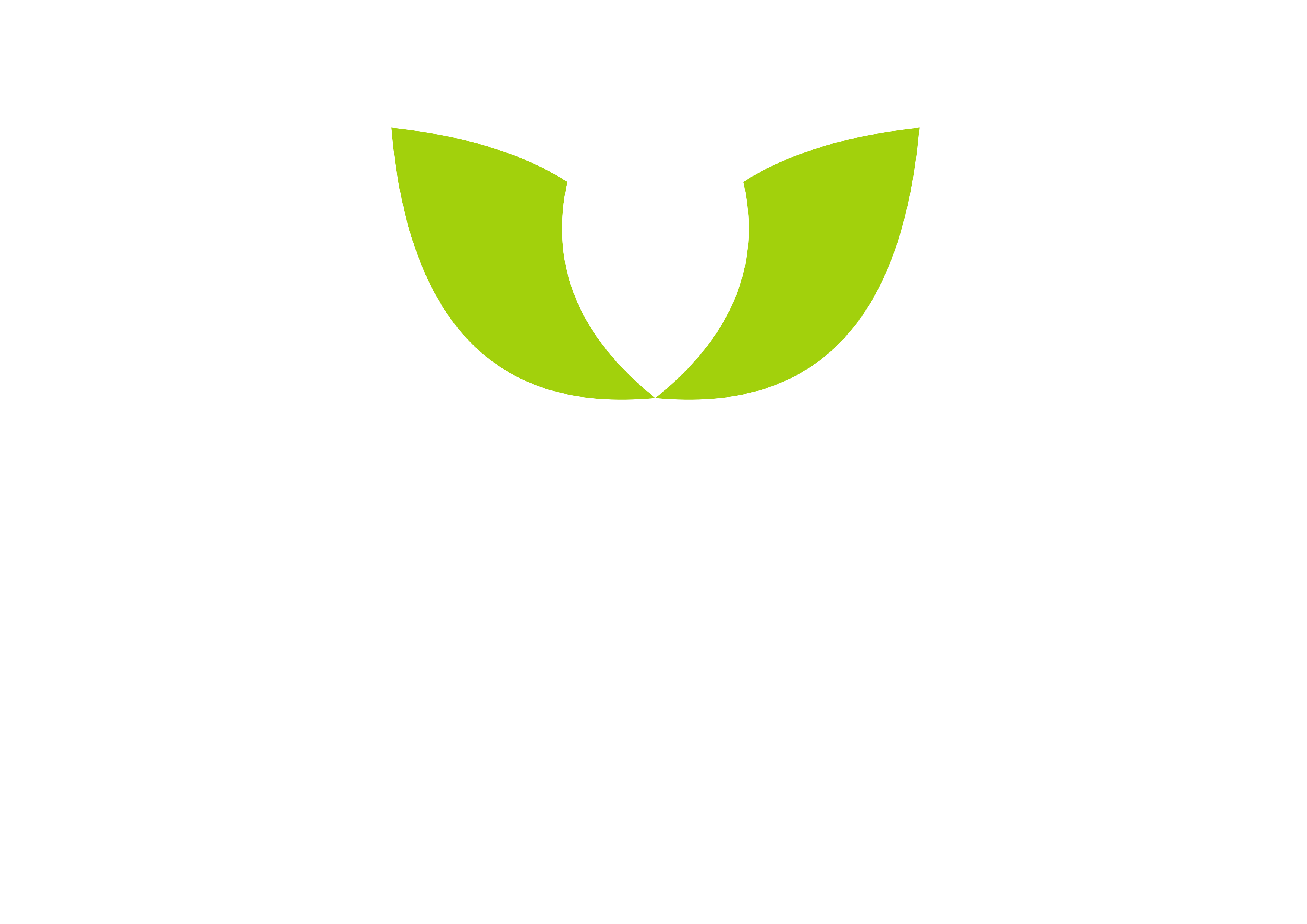 Percuraa Transfer